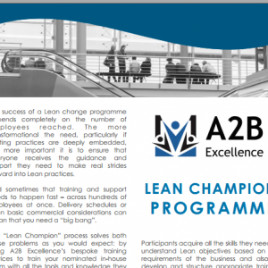 A2B Excellence: website, blogs and thought leadership
